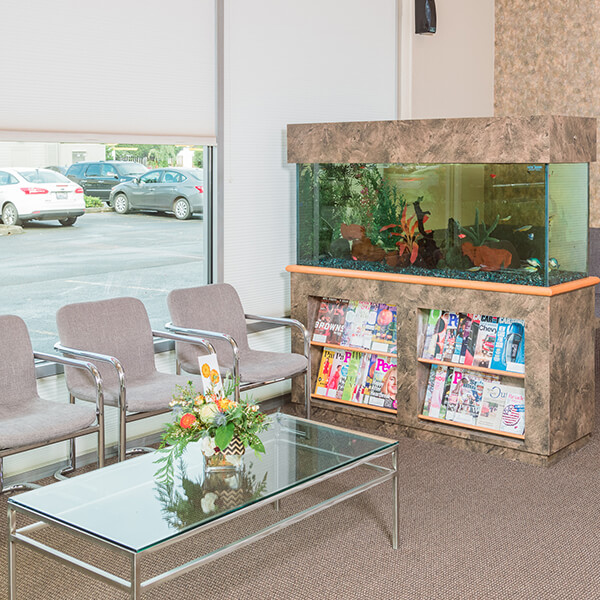 The comfortable waiting room of our office, with a big fish tank and magazines our patients can enjoy